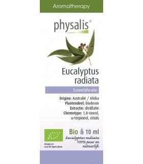 Amylon - Kisiel truskawkowy, bezglutenowy BIO 40g