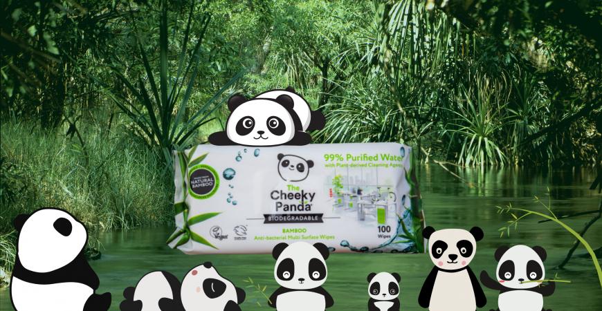 Chusteczki do dezynfekcji powierzchni Cheeky Panda
